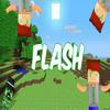 Flash3146