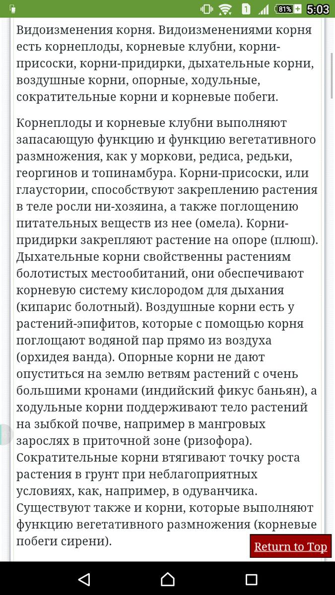 скб банк красноярск кредит наличными онлайн заявка