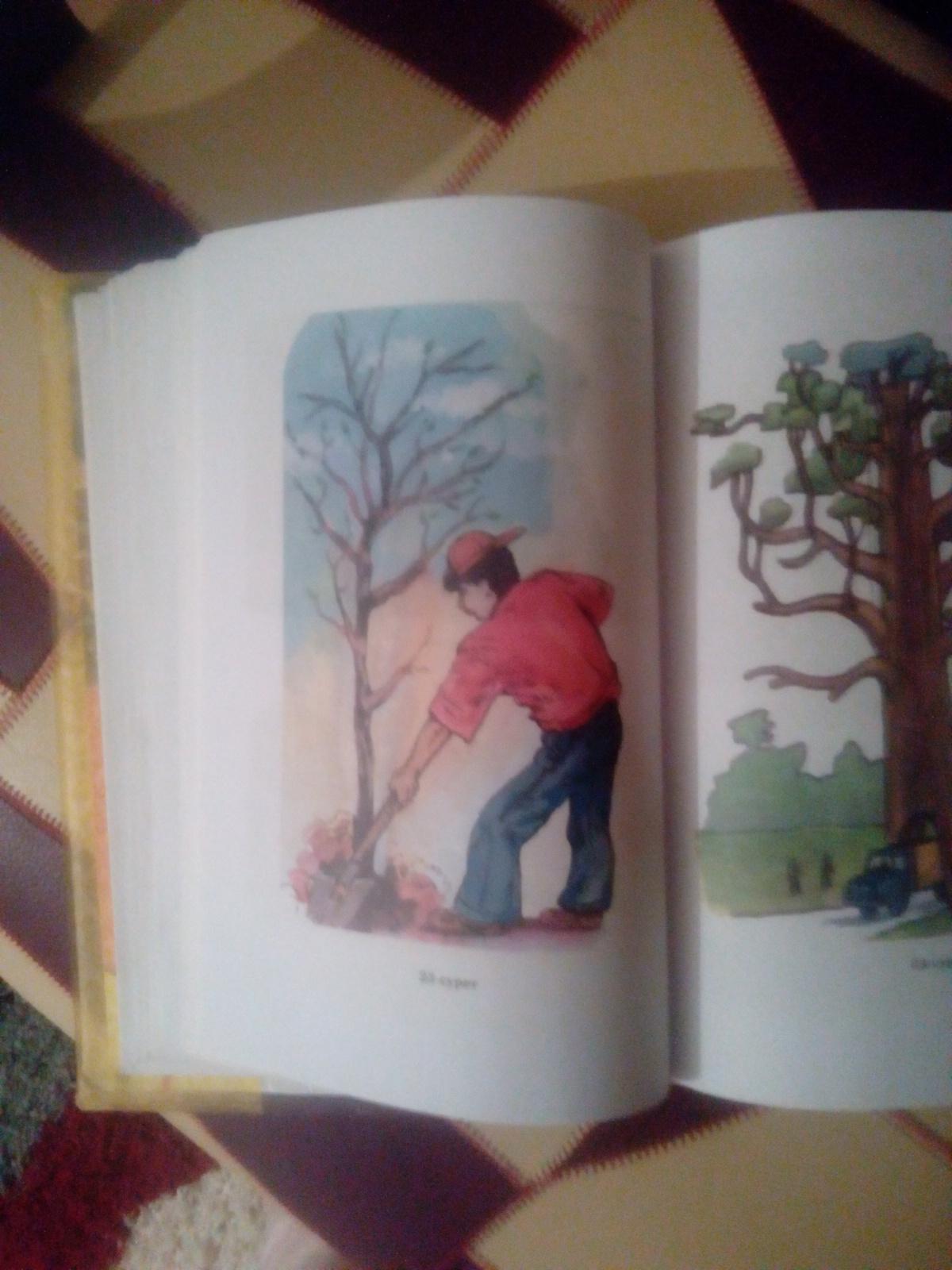 23 Сурет агаш отыргызып жаткан бала туралы шагын шыгарма