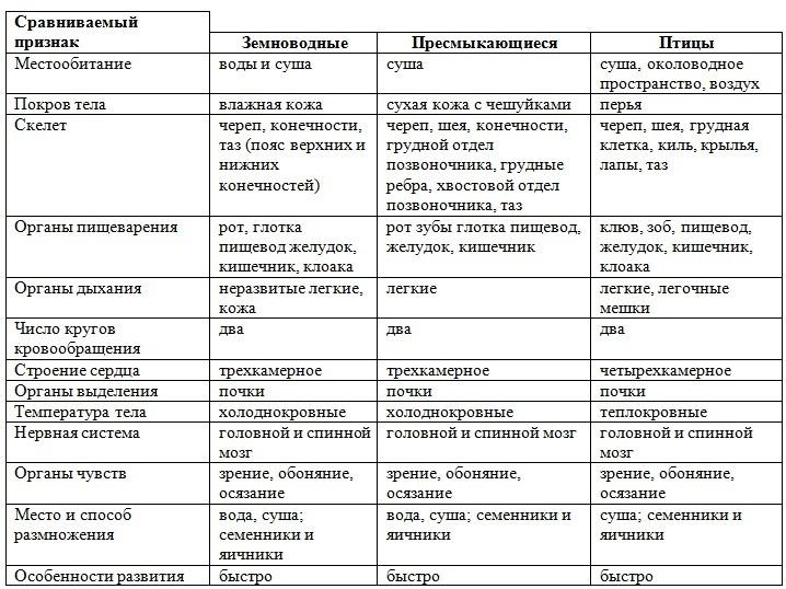 строение пресмыкающихся таблица
