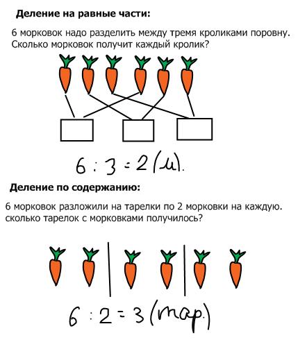 Схематический рисунок к делению 2 класс