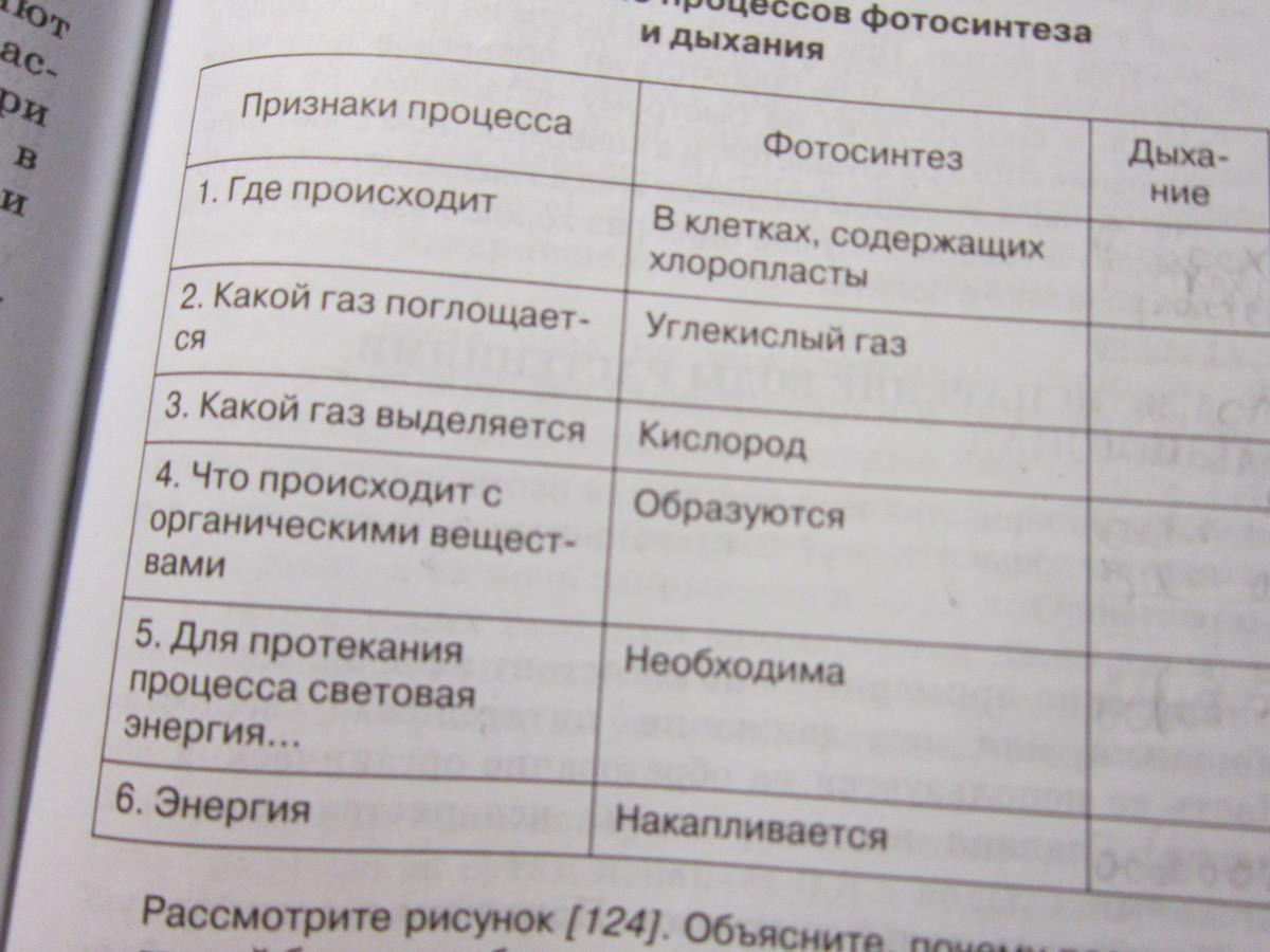 Таблица по биологии 10 класс фотосинтез ответы
