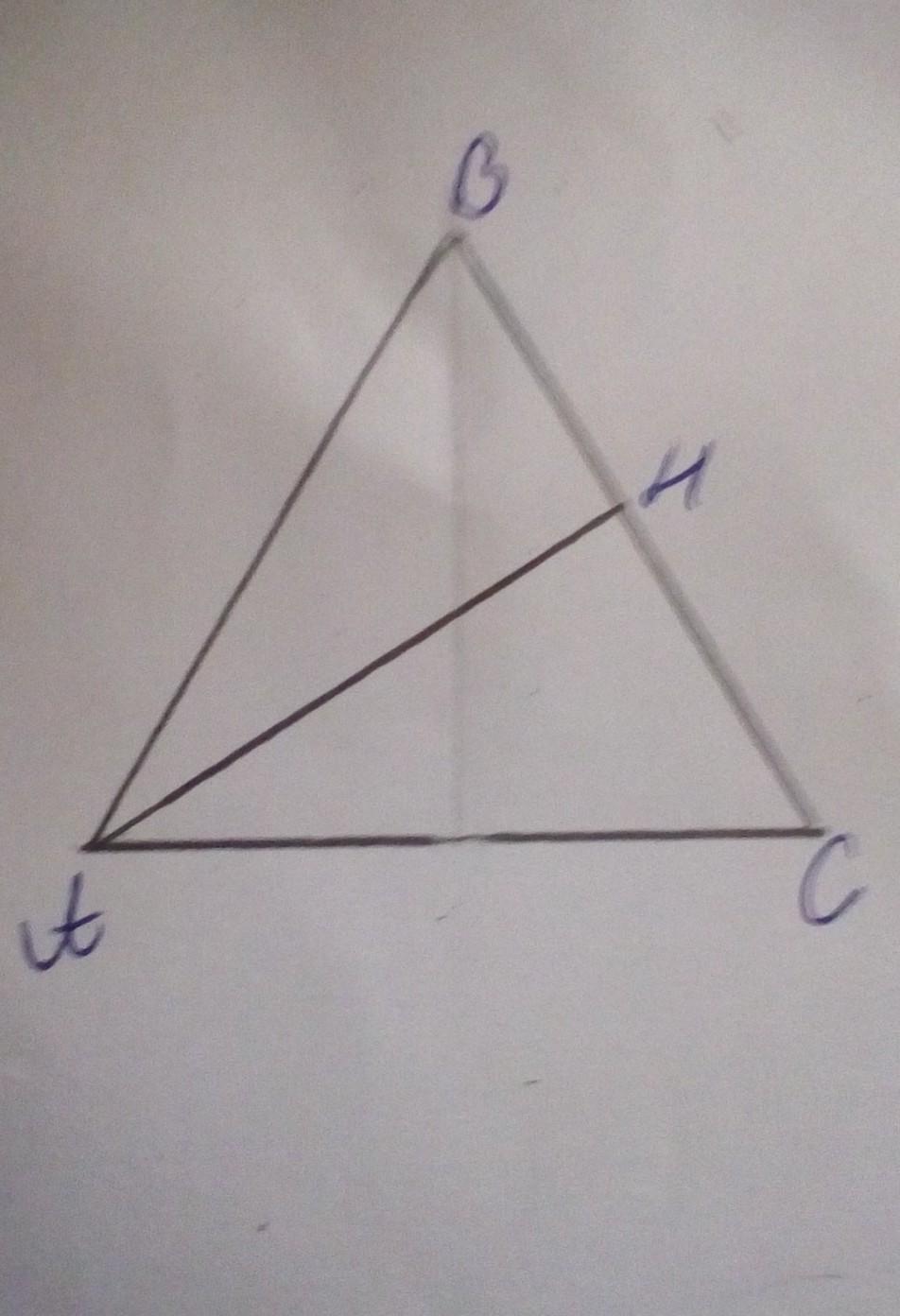 В равнобедренном треугольнике высота проведенная к