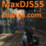maxDJ555