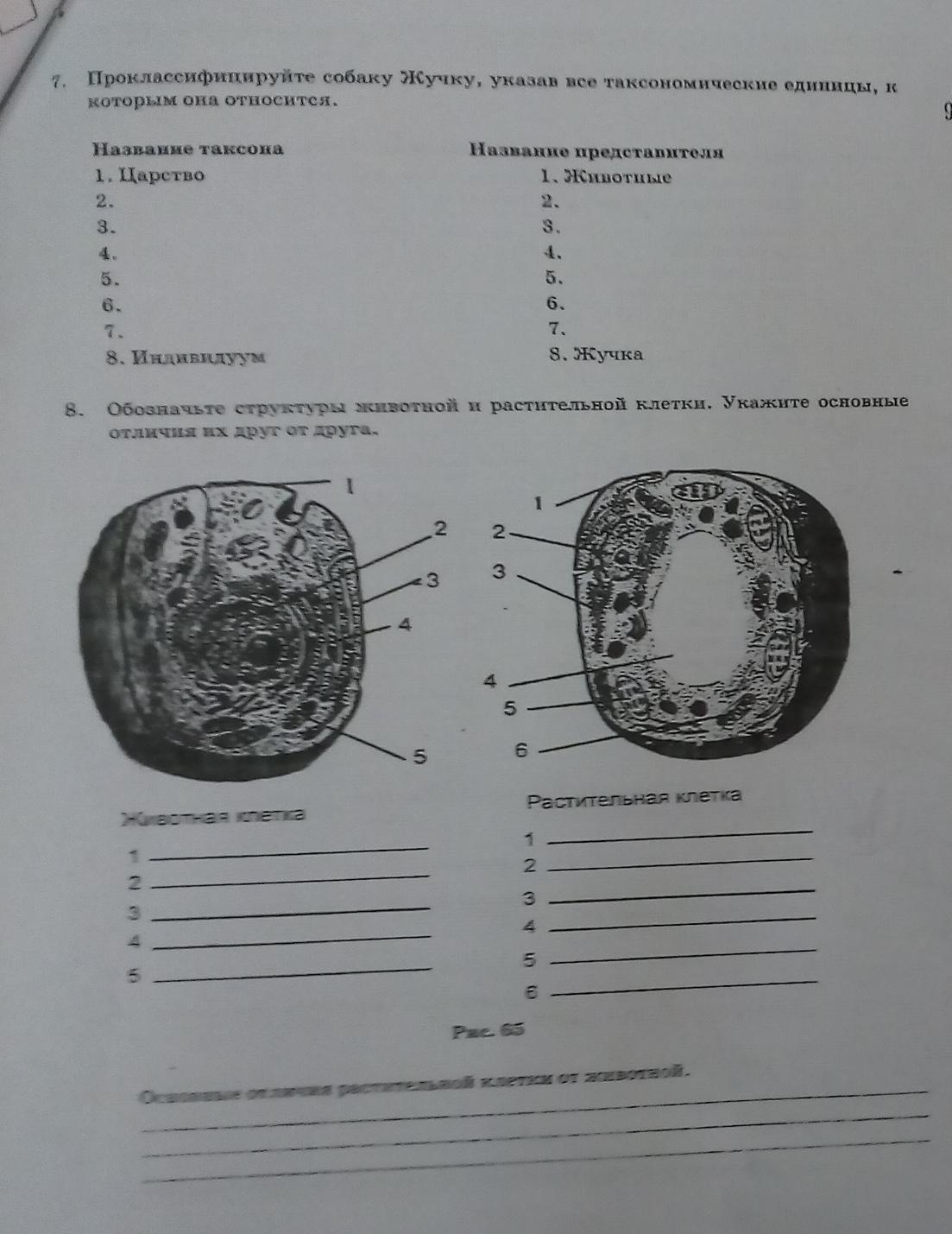 Даю 27 баллов.Решите 2 задания по биологии.