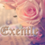 Exentle