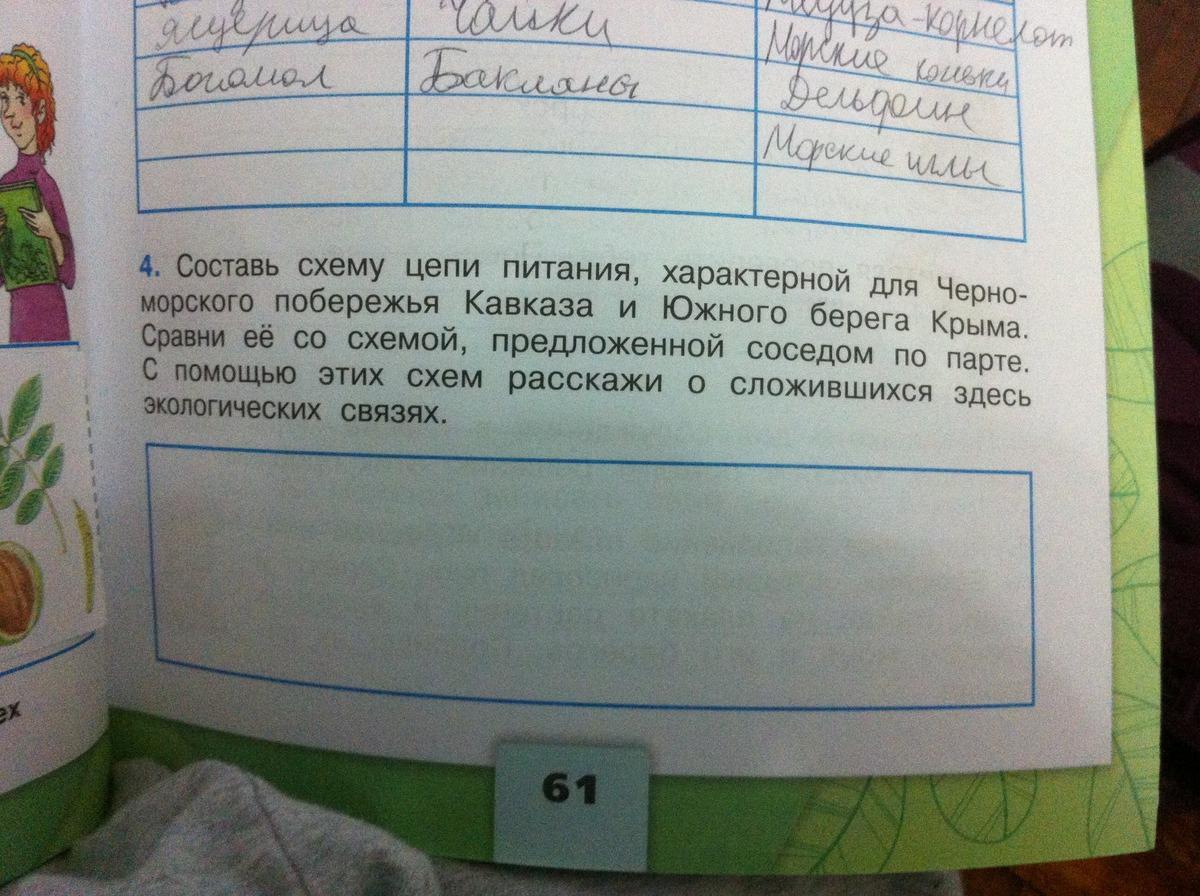 Схема цепи питания характерной для побережья кавказа