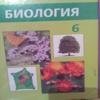 Sabi140904