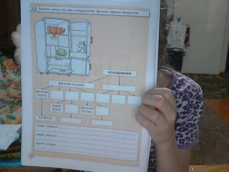 Заполни схему состава холодильника допиши адреса продуктов