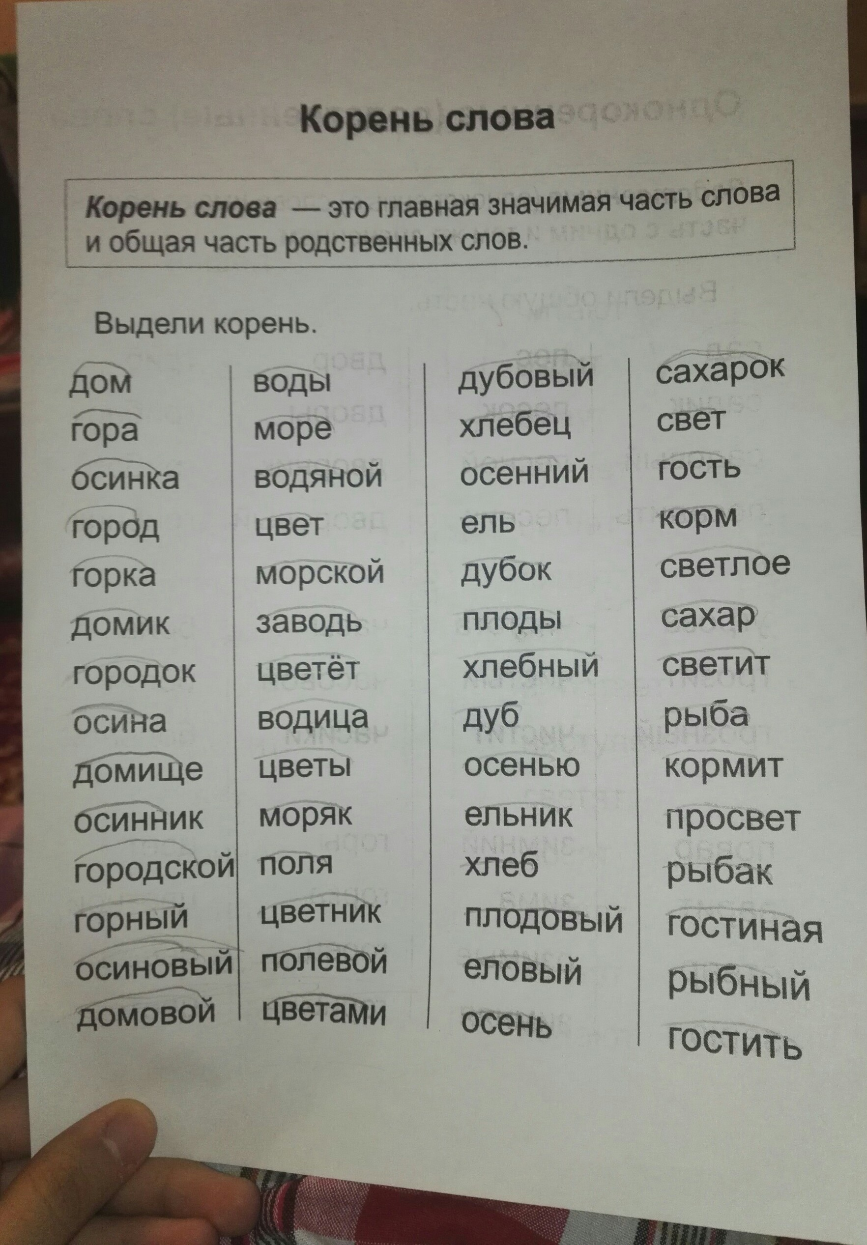корень слова интересный по составу материнский капитал севастополь займ