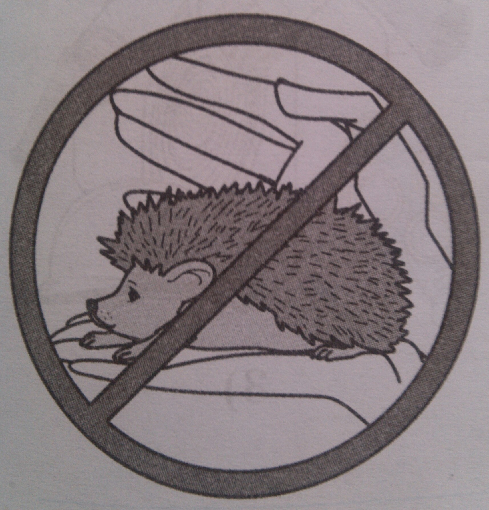 Какое правило отражает этот знак?