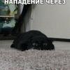 yakushevvasya