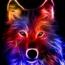 wolf2552