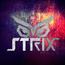 STRIX31