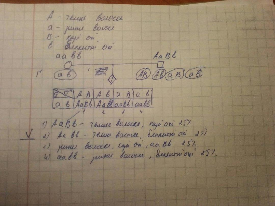 ))))ось фото розв*язку, якщо щось неясно пишіть<br><br>