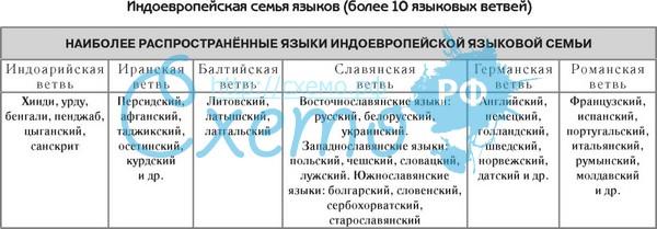В русском языке много тюркских слов