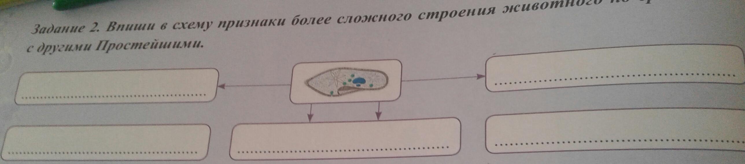 знакомство с клетками растений биология гдз