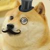 Doge61510666