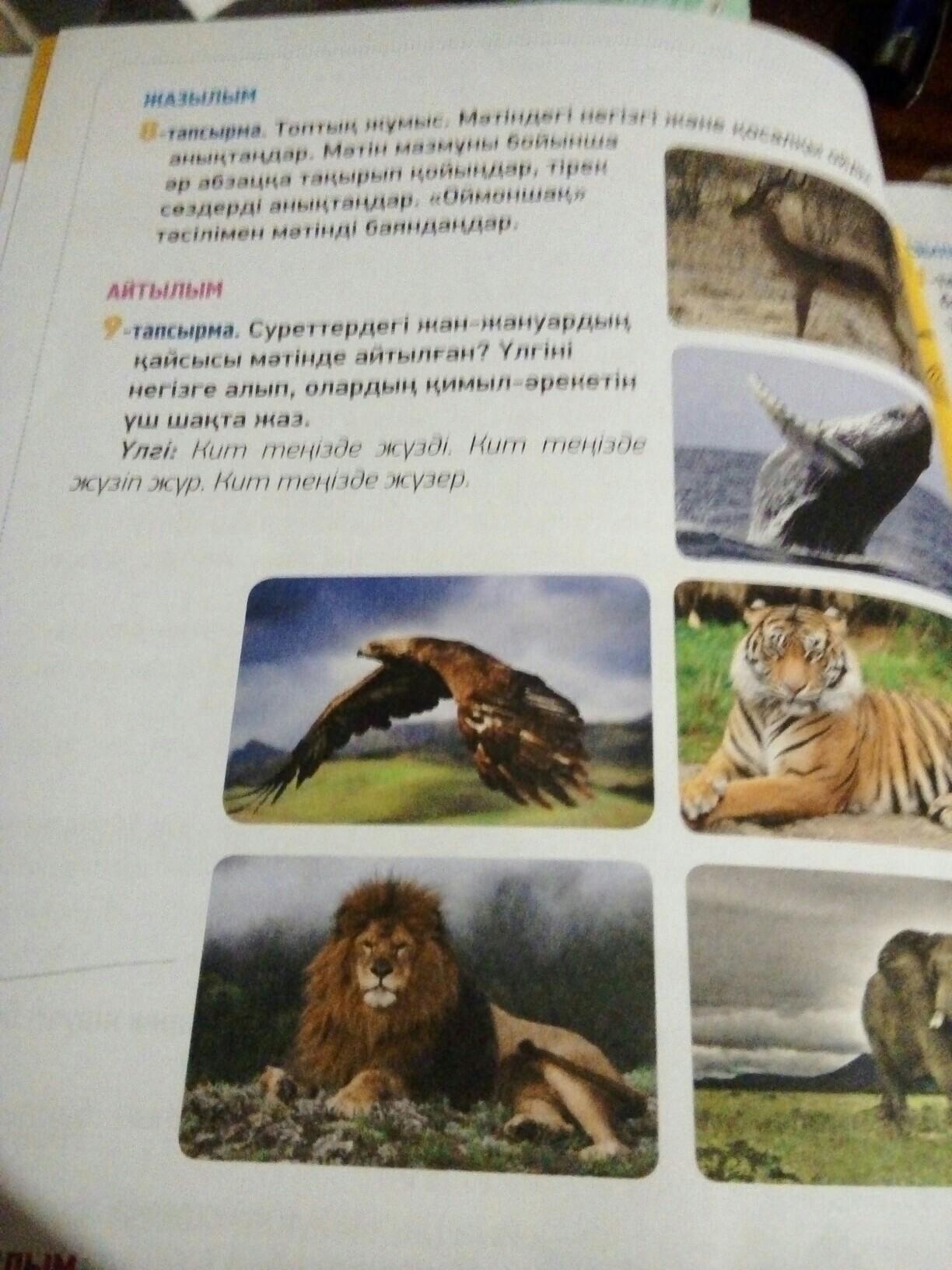 Помогите пожалуйста казахский 9 упражнение