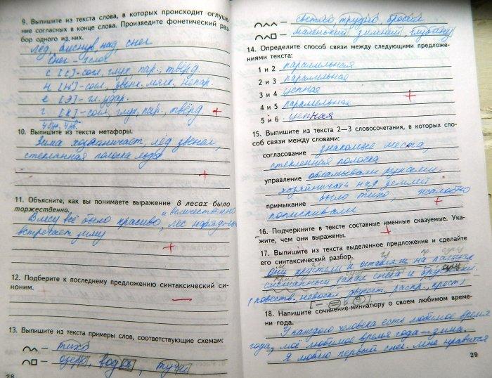 Комплексный анализ текста 8 класс гдз малюшкин новинки недели.