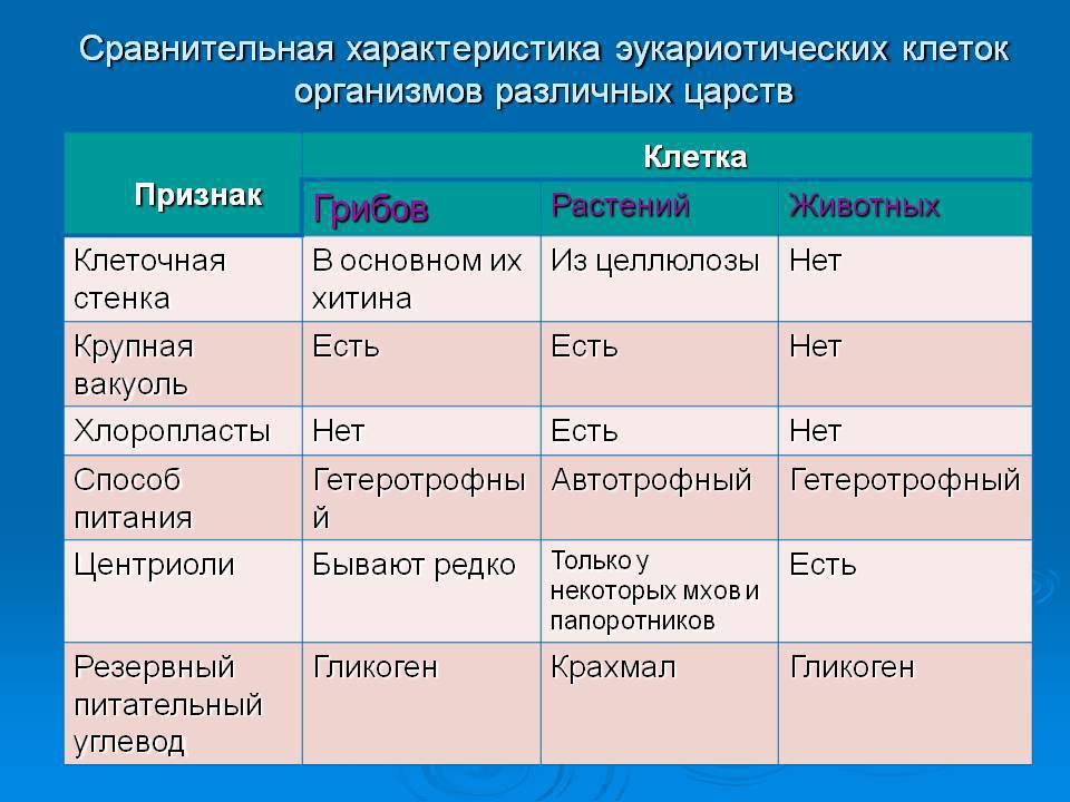 животных отличие и таблица грибов растений от