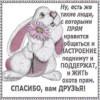 chuxonceva77