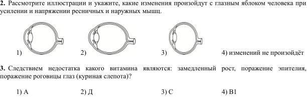 Изображение к вопросу Помогите, 2 и 3, никак не могу сделать :( Загрузить png