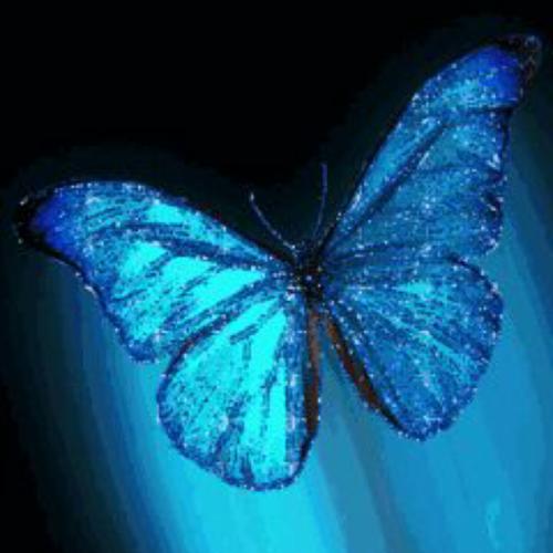 заставка на телефон бабочка порхает крыльями анимация № 454 без смс