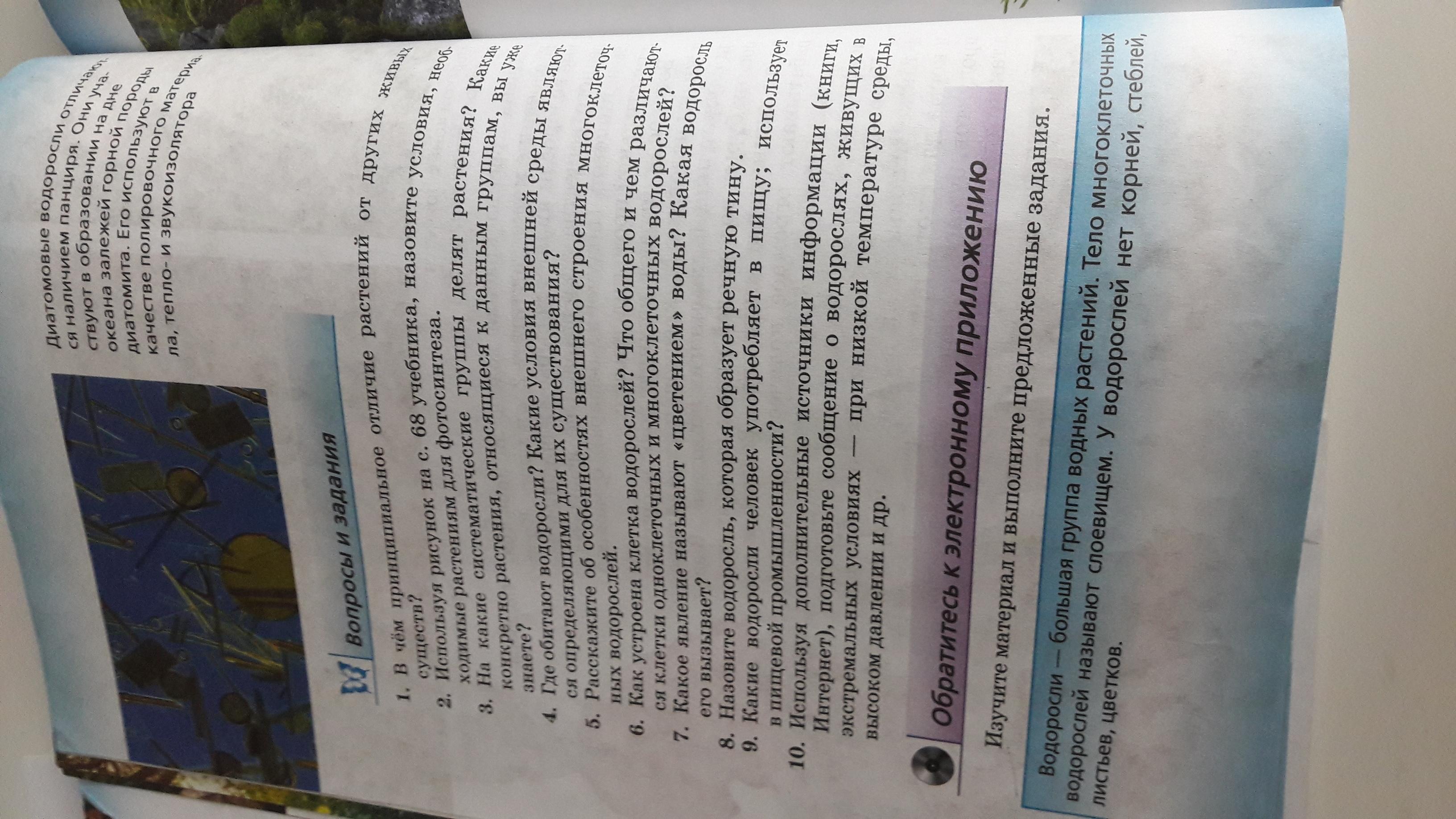 Пж помогите ответить на вопросы 1 и2 3 4 и всёёёё . ( даю подскаску ищите и интернете) но заранее СПАСИБО!!!!