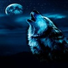 WolfaDreemur727