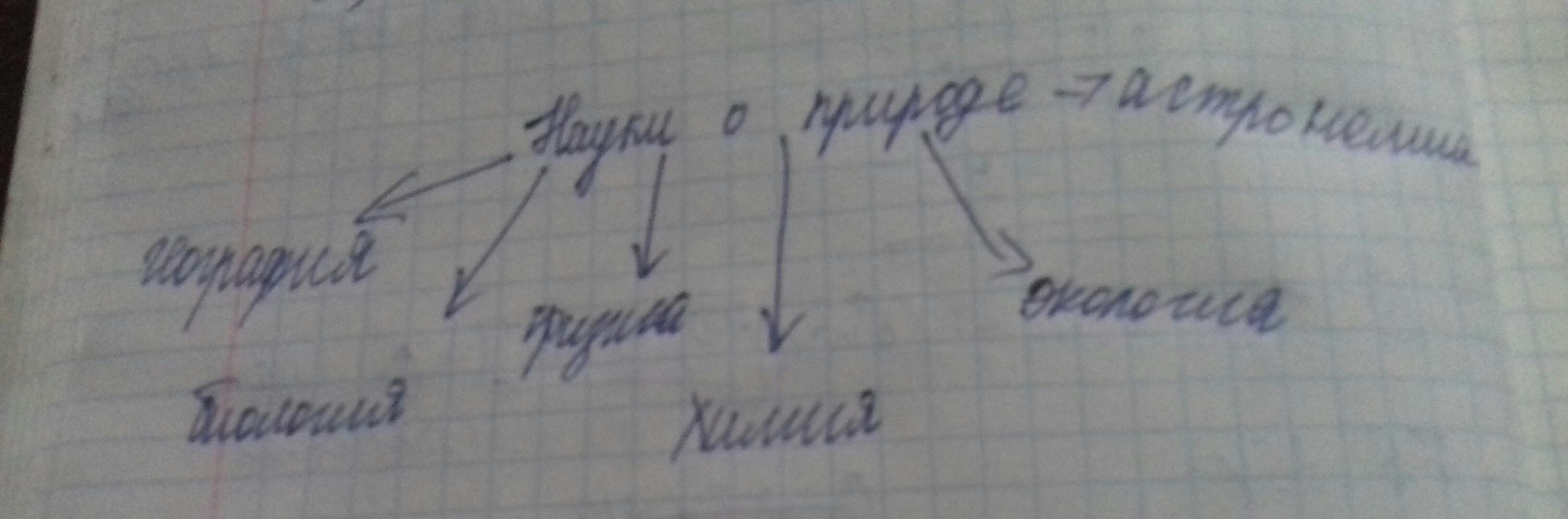 Схема природы 5 класс география фото 606