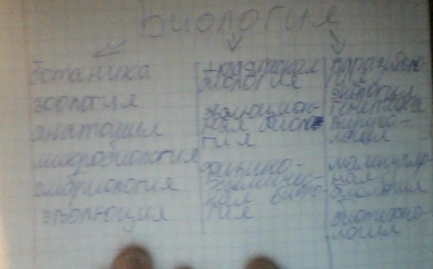 Система биологических наук схема 9 класс.