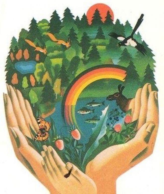 Картинки на тему отношения к природе
