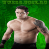 Wrestler132210