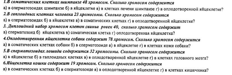 skolko-spermi-soderzhitsya