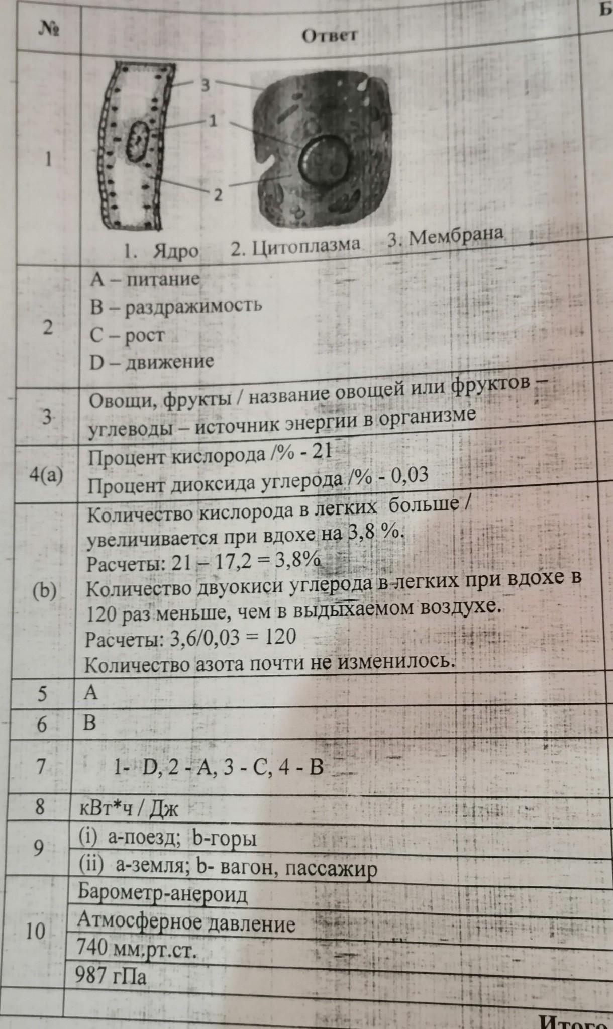 Соч по естество знанию 6 класс 3 четверть ответы