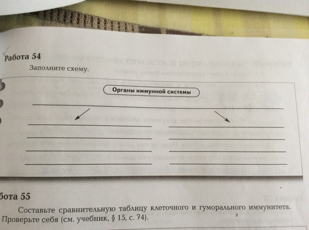 Биология 8 класс приложение
