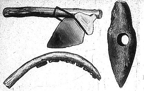Картинки по запросу Серп древнего человека