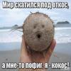 миливанили1