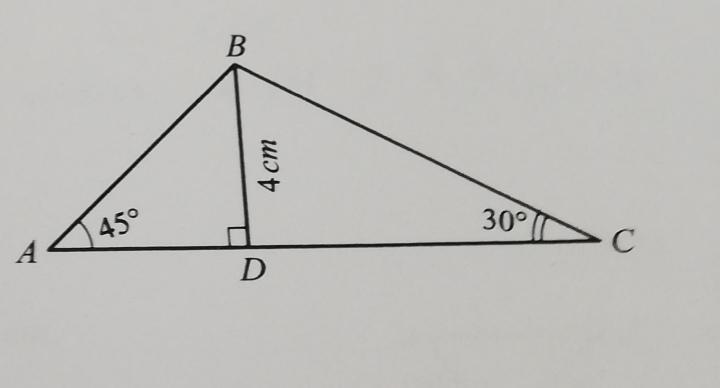 На фото показан треугольник ABC. ∠A = 45°, ∠C =
