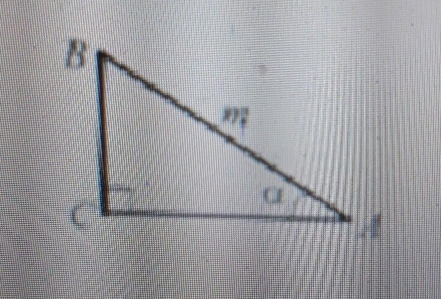 Зображено прямокутний трикутник ABC (C=90°),