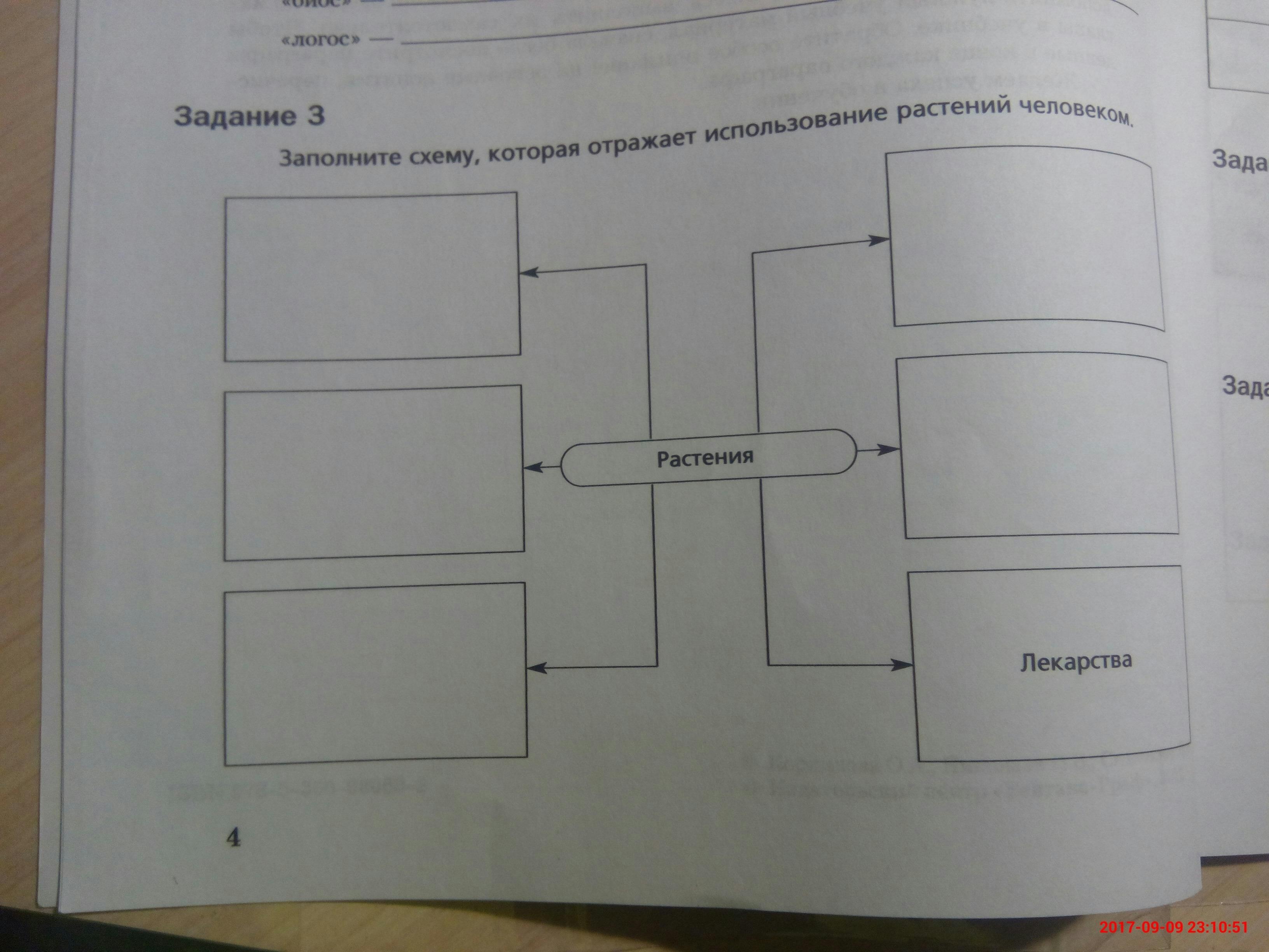 Схема которая отражает использование растений