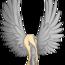 AngelMoon