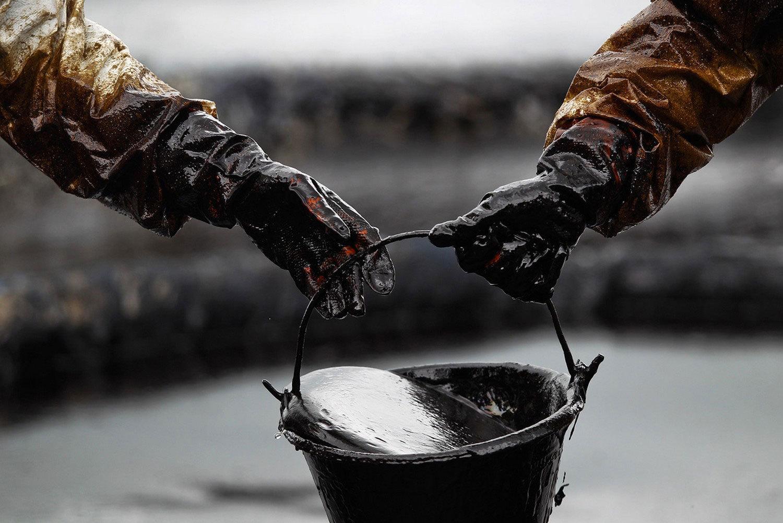 реферат на тему нефть Школьные Знания com Загрузить jpg