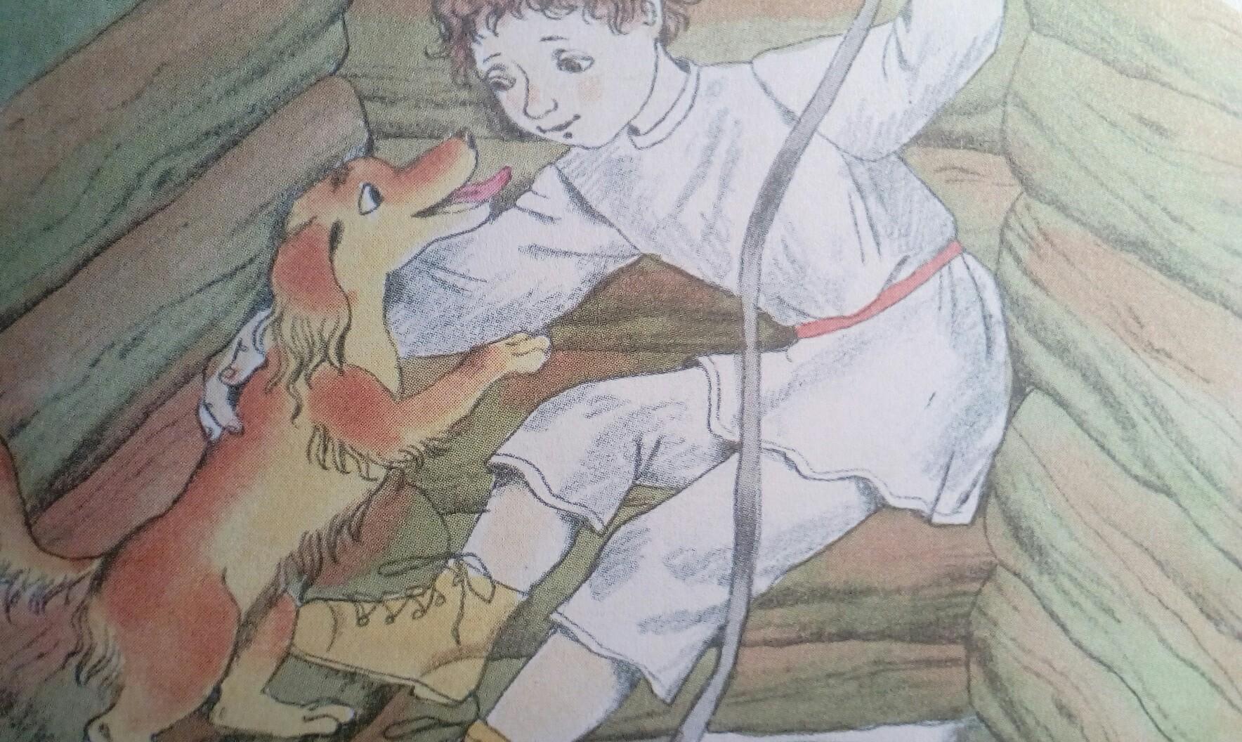 римских тема и жучка картинки индюшка приготовится нормально