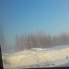 Никуська111