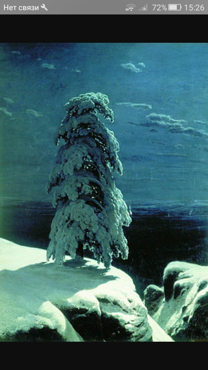 Сочинение описание по картине Шишкина на севере диком