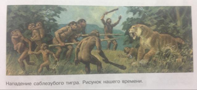 опишите рисунок нападение саблезубого тигра по плану