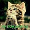 Hoppipopi11