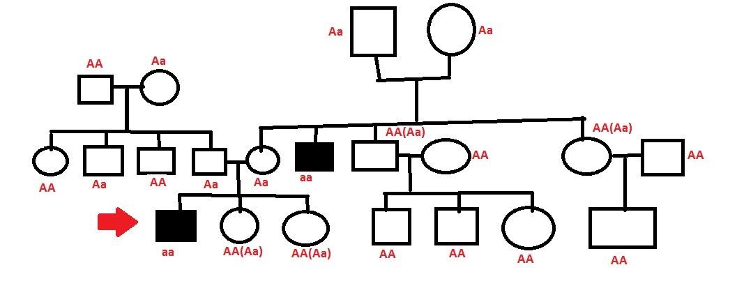 Тип наследования: аутосомно-рецессивный,болезнь проявляется